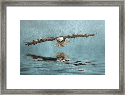Framed Print featuring the photograph Eagle On Misty Lake by Brian Tarr