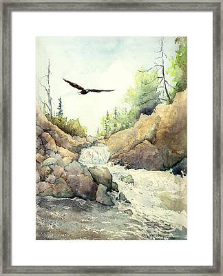 Eagle Over Dave's Falls Framed Print