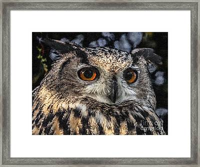 Eagle Owl Framed Print by Liz Leyden