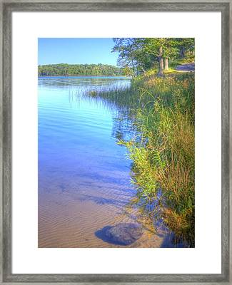Eagle Point Framed Print by Larry Capra