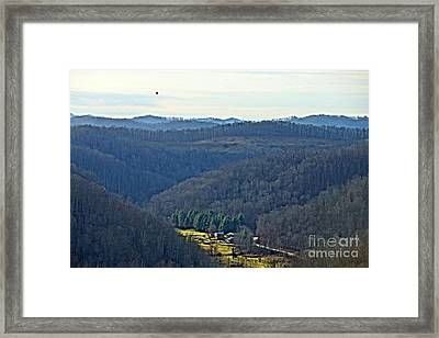 Eagle Returns To Sun-lit Valley Framed Print by Timothy Connard