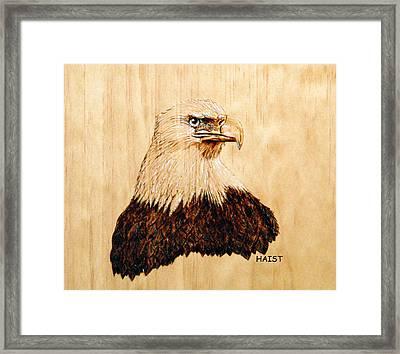 Eagle Framed Print by Ron Haist