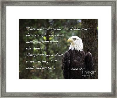 Eagle Scripture Isaiah Framed Print