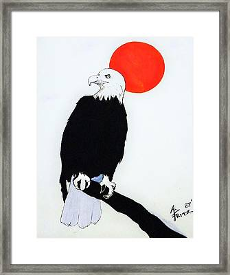 Eagle Sunrise Framed Print