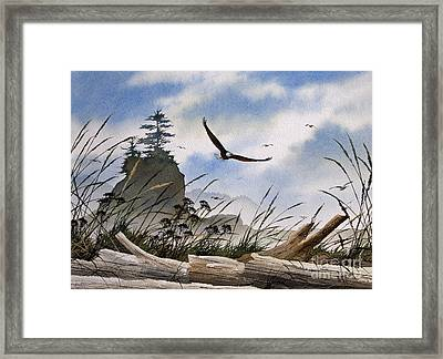 Eagles Home Framed Print by James Williamson