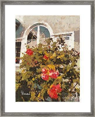 Alameda Roses Framed Print