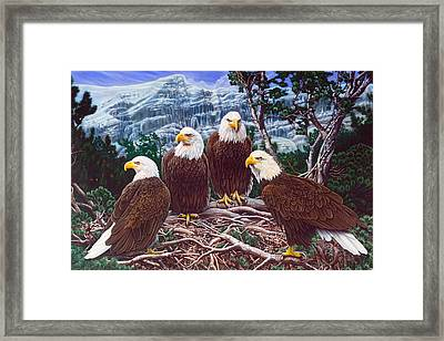 Eagles Framed Print by Larry Taugher