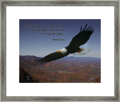 Eagles Wings Framed Print