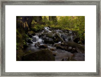 Framed Print featuring the photograph Early Autumn Cascades by Ellen Heaverlo