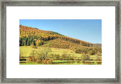 Early Autumn Framed Print by David Birchall