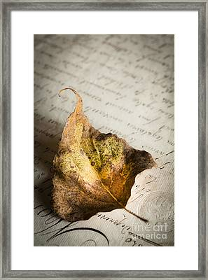 Early Autumn Framed Print by Jan Bickerton