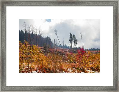 Framed Print featuring the photograph Early Autumn Yellow Red Colored Mountain View by Jivko Nakev