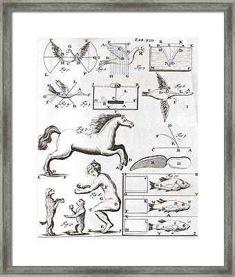 Early Biomechanics, 17th Century Framed Print by Science Photo Library