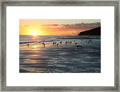 Framed Print featuring the photograph Early Birds by Dick Botkin