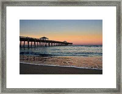 Early Birds Framed Print by Laura Fasulo