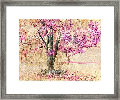 Early Bloom Framed Print
