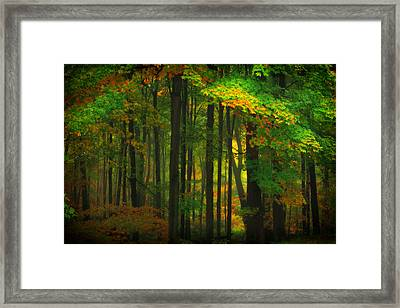 Early Fall 4 Framed Print by Emmanuel Panagiotakis