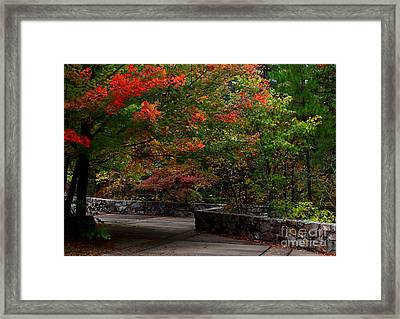 Early Fall At Talimena Park Framed Print by Robert Frederick