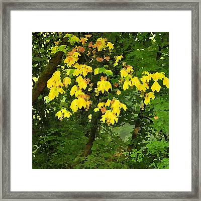 Early Fall Color 26311 Pknife Framed Print by Jerry Sodorff