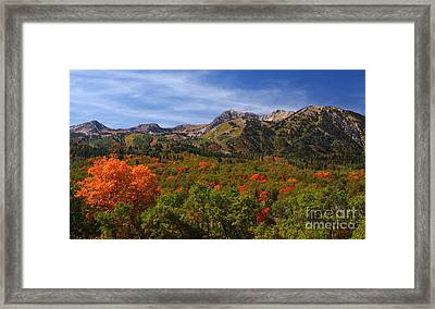 Early Fall Color Framed Print