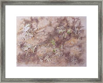 Early Fall Framed Print by Michele Myers