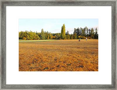 Early Fall Morning In The Rough On The Golf Course Framed Print