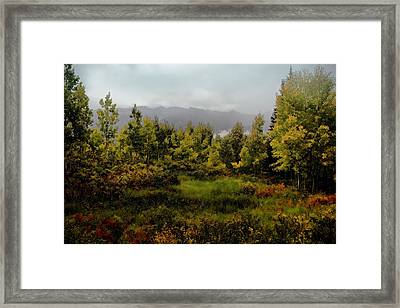 Framed Print featuring the photograph Early Fall On Kebler Pass by Ellen Heaverlo
