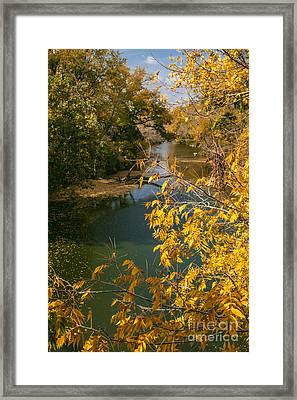 Early Fall On The Navasota Framed Print