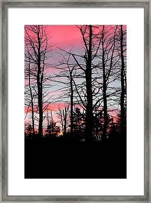 Early Fall Sky Vi Framed Print by Brian Lucia