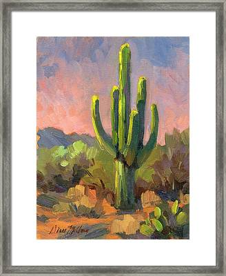 Early Light Framed Print by Diane McClary