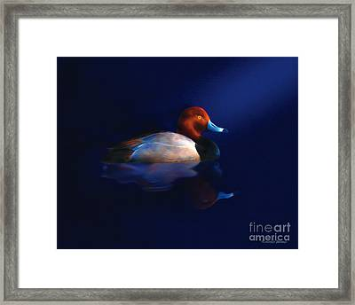 Early Light Framed Print