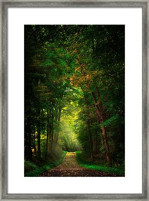Early  Mist  Framed Print
