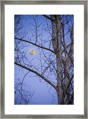 Framed Print featuring the photograph Early Moon by Micah Goff
