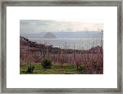 Framed Print featuring the photograph Morro Bay Early Morning by Walter Fahmy