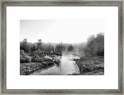 Early Morning At The Rookery Framed Print by Bruce A Lee