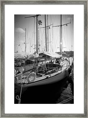 Early Morning Beauty Framed Print