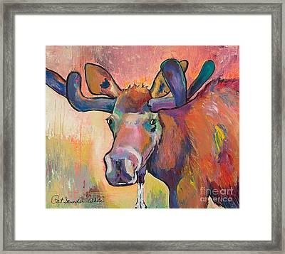 Early Morning Browser Framed Print by Pat Saunders-White