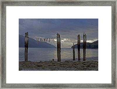 Early Morning Framed Print by Cathy Mahnke