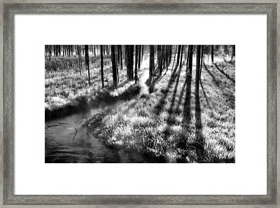 Early Morning Chill Framed Print by Mark Kiver
