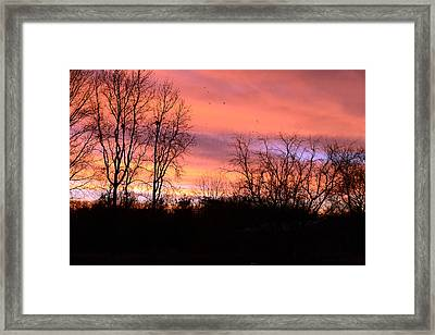 Early Morning Color Canvass Framed Print