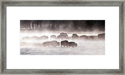 Early Morning Crossing Framed Print by CR  Courson