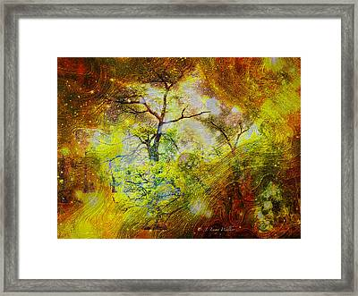 Early Morning Cypress Abstract Framed Print by J Larry Walker