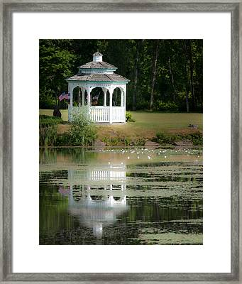 Early Morning Delight Framed Print by Nan Schefcick