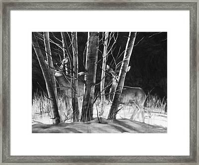 Framed Print featuring the drawing Early Morning Does by Aaron Spong