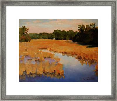 Early Morning Flight Framed Print by Barbara Jones