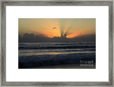 Early Morning Flight Framed Print by Noel Elliot