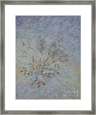 Early Morning Flurry Framed Print