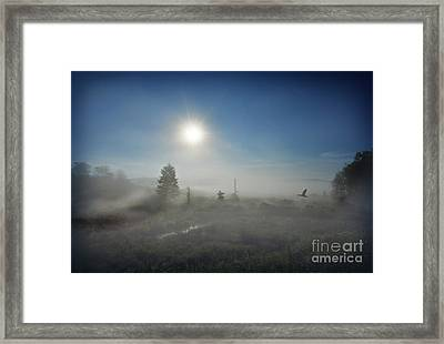 Framed Print featuring the photograph Early Morning Fog At Canaan Valley by Dan Friend