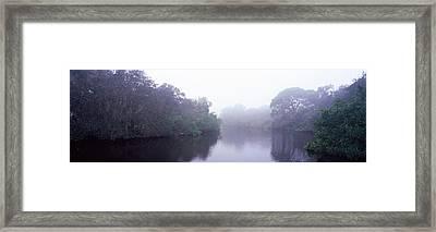 Early Morning Fog On A Creek, South Framed Print