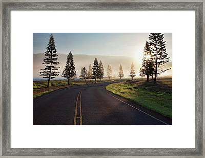 Early Morning Fog On Manele Road Framed Print